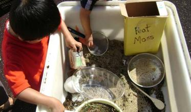 Children playing in a sensory bin with sand and planting materials